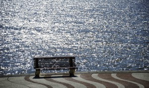 A bench on the river..facing away from the water..?